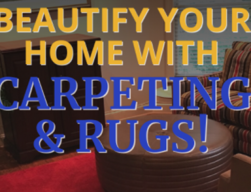 Check Out Our Area Rug Sale! 🎉